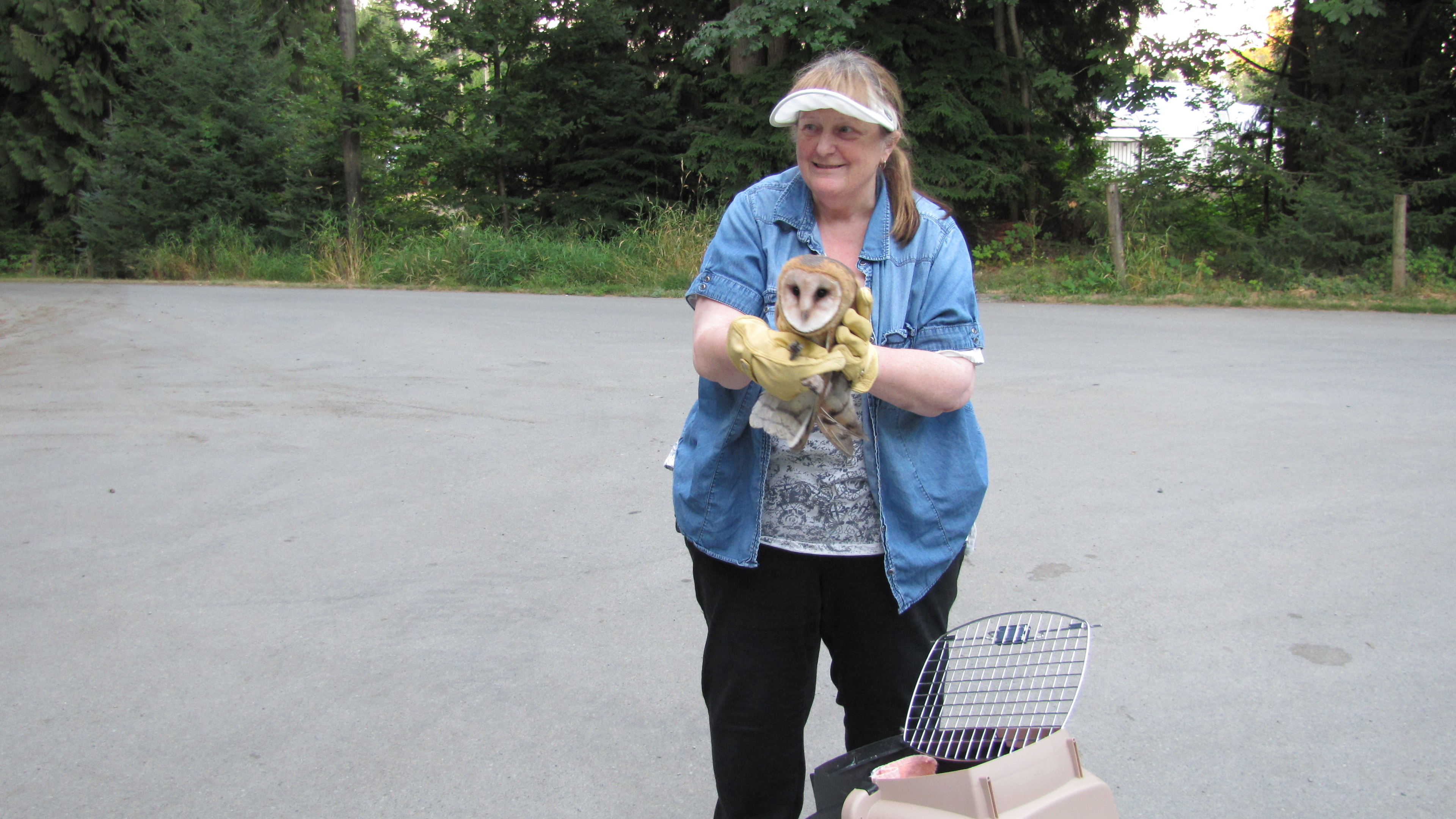 O.W.L. Orphaned Wildlife Rehabilitation Society
